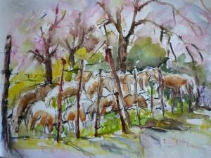 les moutons de Daniel
