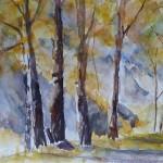 Les arbres de la grange  du Villaret